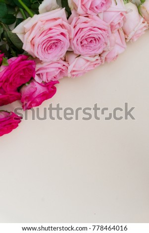 Violet and pink blooming rose flowers background with copy space