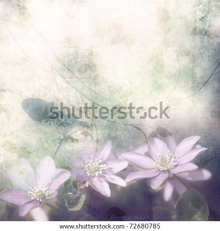Violet flowers on grunge old background with leaves,pastel colors