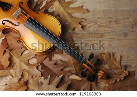 Violin and autumn  leaves on wooden background. Copy space