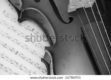 violin-black and white