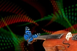 violin fretboard. melody concept. Colored butterfly on violin neck