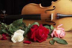 Violin, guitar and roses.