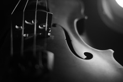 Violin , Instrument in Dark , Black and white , Music light