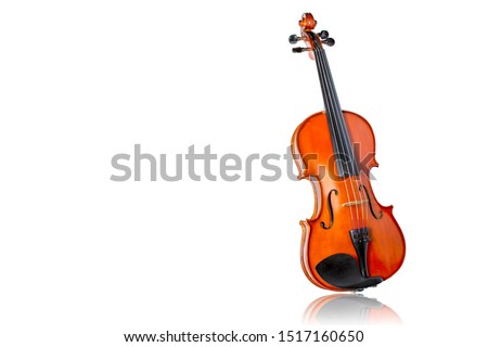 Violin isolate on white background.Body violin.Picture have white space for text. Shadow is mirror reflection. Сток-фото ©