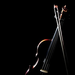 Violin music instrument of orchestra with bow isolated on black