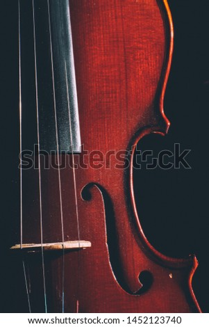 Violin, One of classical string instruments. #1452123740