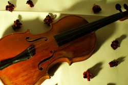 Violin with flowers and yellow lighning