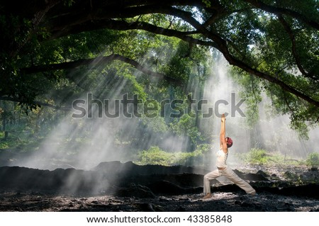 virabhadrasana, hatha yoga in the morning with sun ray through the tree branches