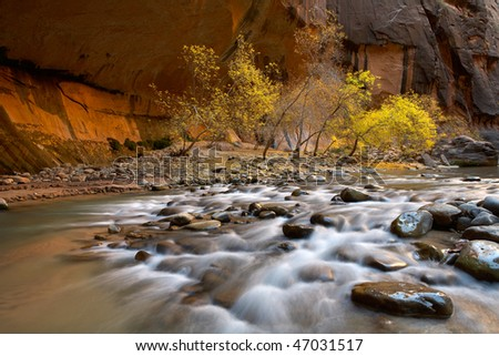 Virgin river falls, zion national park