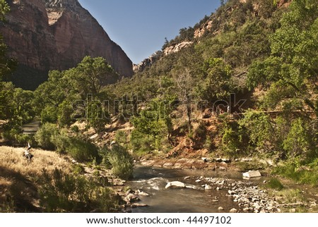 Virgin River through Zion Canyon National Park
