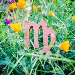 Virgo symbol resting in yellow flowers