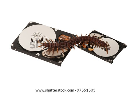 Virus comes from one hard disk drive to another one,  isolated on white background