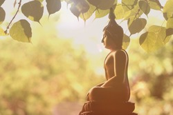Visakha Puja Day , Buddha statue , bodhi leaf  with double exposure and len flared , soft image and soft focus style