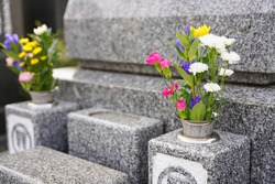 visiting a grave on the equinoctial week Japanese custom