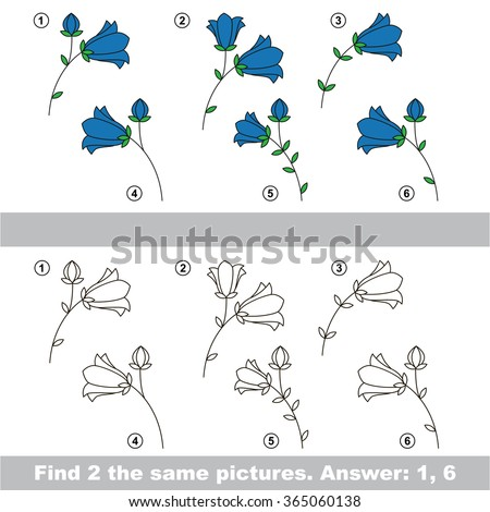 find hidden couple of bluebells 365060138
