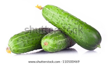 vitamin harvest of vegetables from three cucumber, pickle, gherkin with green sprigs of fresh isolated on white background