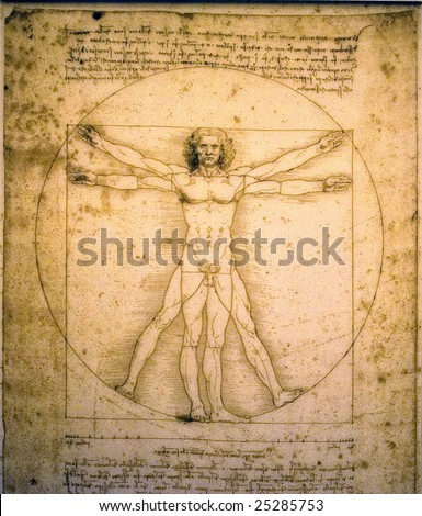 Vitruvian man of Leonardo Da Vinci