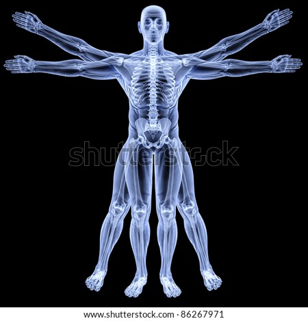 vitruvian man under X-rays. isolated on black.