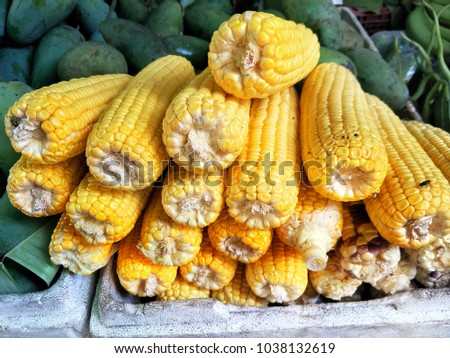 Vivid and fresh Corn vegetables, yellow and pale yellow color. Can make to food or dessert.Sweet plant on the green fruit background in the market . #1038132619