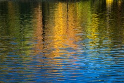 Vivid orange and golden tones reflect in water on an early morning fall day. Northern Wisconsin.