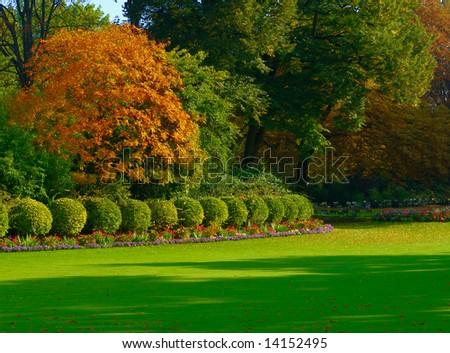 Vivid trees, jardin du Luxembourg, Paris