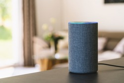 voice controlled smart speaker