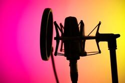 Voiceover studio large diaphragm cardioid microphone in professional voice recording studios.