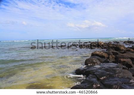 volcanic rocks on the beach