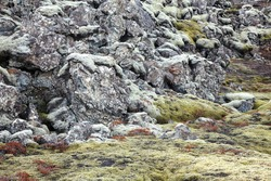 Volcanic soil rock formations in Iceland. Soil with volcanic rocks, vegetation and moss in Iceland. Icelandic moss in shades of soft green, gray and brown in late winter. Shaped rocks with clear moss.