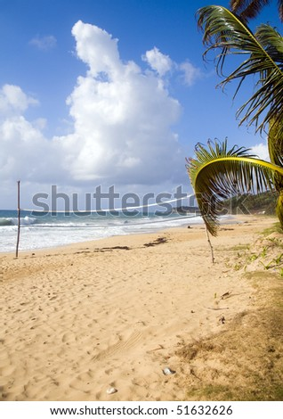 volley ball sports court on  undeveloped beach long bay big corn island nicaragua central america