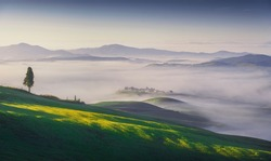 Volterra foggy panorama, trees, rolling hills and green fields at sunrise. Tuscany Italy, Europe