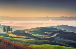 Volterra foggy panorama, trees, rolling hills, road and green fields at sunrise. Tuscany Italy, Europe