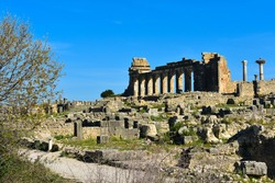 Volubilis, the ancient Roman ruins in Morocco. Also the winter spot for storks who use the ancient columns to build their nests.