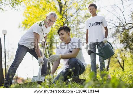 Volunteer wanted. Merry three volunteers planting tree and smiling