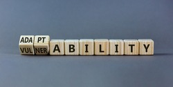Vulnerability or adaptability symbol. Turned wooden cubes and changed words 'vulnerability' to 'adaptability'. Grey background, copy space. Business, vulnerability or adaptability concept.