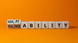 Vulnerability or adaptability symbol. Turned wooden cubes and changed words 'vulnerability' to 'adaptability'. Orange background, copy space. Business, vulnerability or adaptability concept.