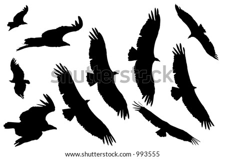 Vulture silhouettes