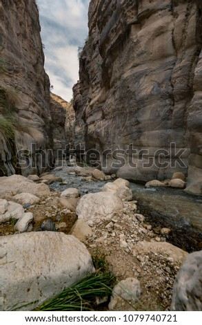 Wadi ibn al hammad (Jordan). At microlevel a lot of water is present. This wadi, fed by a hot spring, has brought a beautiful erosion erosion landscape in thesoft sandstone rocks. Stockfoto ©