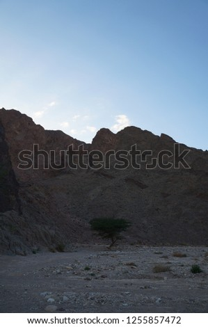 Wadi Shahamon near Eilat in sunset twilight time #1255857472