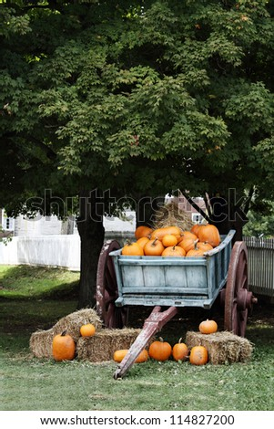 Wagon load full of pumpkins under a shady oak tree for sale.