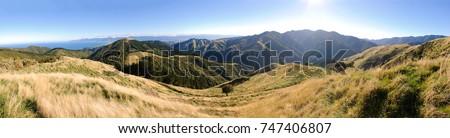 Wairarapa panorama #747406807