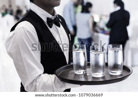 Waiter serving water and beer #1079036669