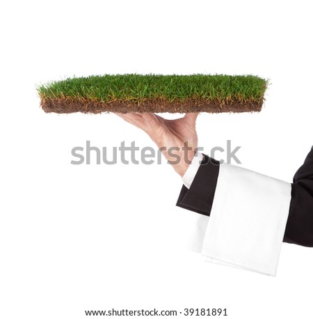 waiter with a green tray. Organic concept