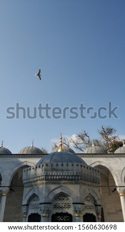 Waiting for prayers in the courtyard of the historical mosque Stok fotoğraf ©