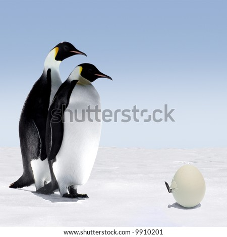 Waiting for the Egg to Hatch