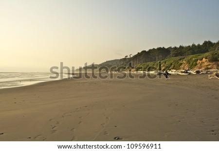 Walk on the Beach. Pacific Beach - Washington Coast, USA. Recreation Photography Collection.