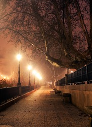 walk with street lamps at night cityscape