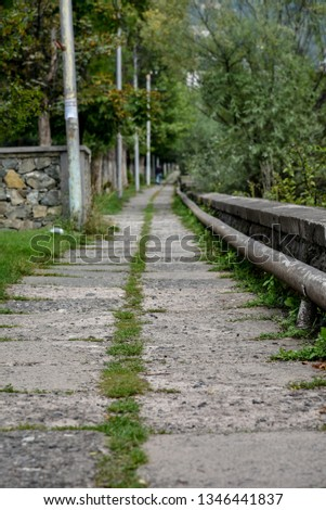 walk your own path,lone path. #1346441837
