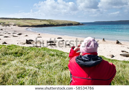 walker resting and watching seal, ship in the distance in Enderby Island, Sub-antarctic Islands, NZ