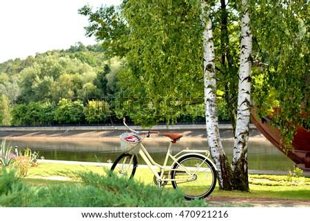 Walking Bike near tree - Shutterstock ID 470921216